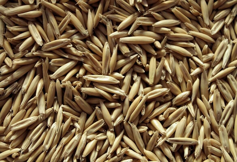 farina d'avena senza glutine